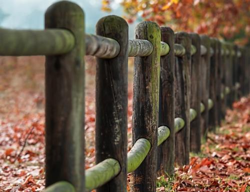 Mending Walls: Why Good Fences Make Good Neighbors