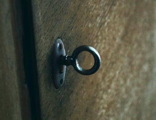 """""""The Door in the Dark"""""""