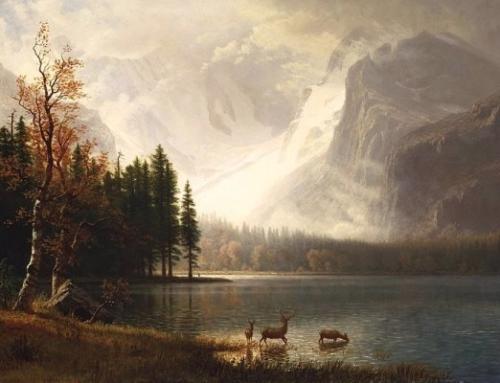 Colorado's Enduring Constitutional Heritage