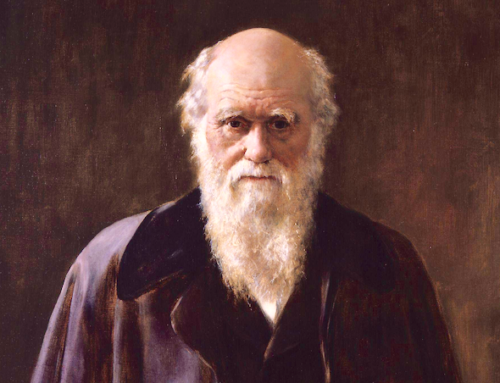 Charles Darwin's Two Faulty Metaphors