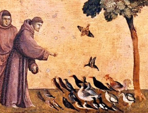 """Il Poverello"": Saint Francis' Piety for Man and Animals"