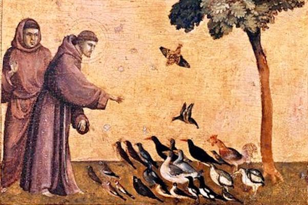 Il Poverello: Saint Francis' Piety for Man and Animals