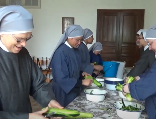 Can No One Be Left Alone? The Little Sisters of the Poor Case