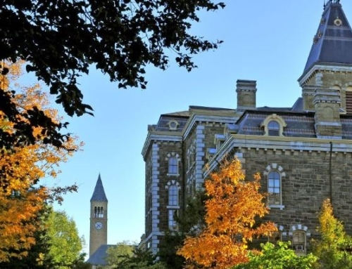 """""""Not With a Bang But a Whimper"""": The Death of the American University"""