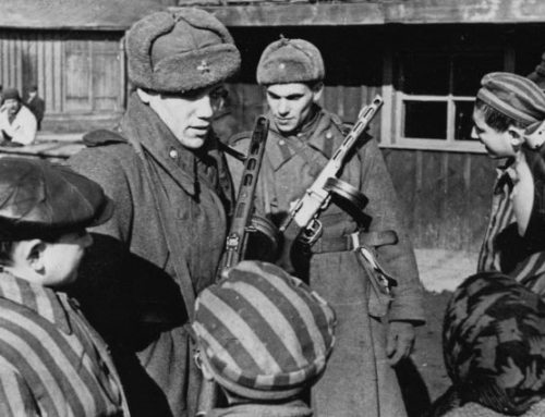 The Liberation of Auschwitz: Playing the Blame Game