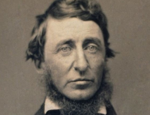 Thoreau's Guilty Conscience